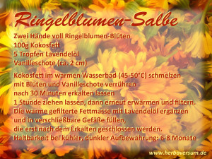Ringelblumen-Salbe