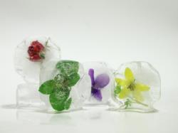 Essbare Blüten in Eiswürfeln sehen toll aus und bieten sich als Highlight zu Cocktails und Bowle. Foto: Rosita Sellmann/aboutpixel.de