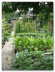 Ein Blick in Fabios Bauerngarten.
