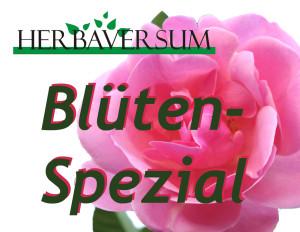 Essbare Blüten Spezial im Herbaversum