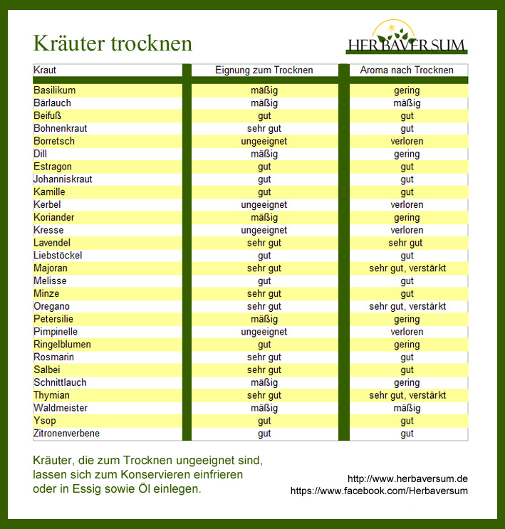 Kraeuter-trocknen-Grafik
